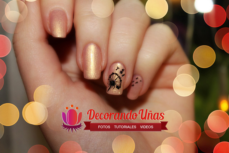 videos de imagenes de uñas decoradas